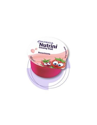NUTRINI CREAMY FRUIT